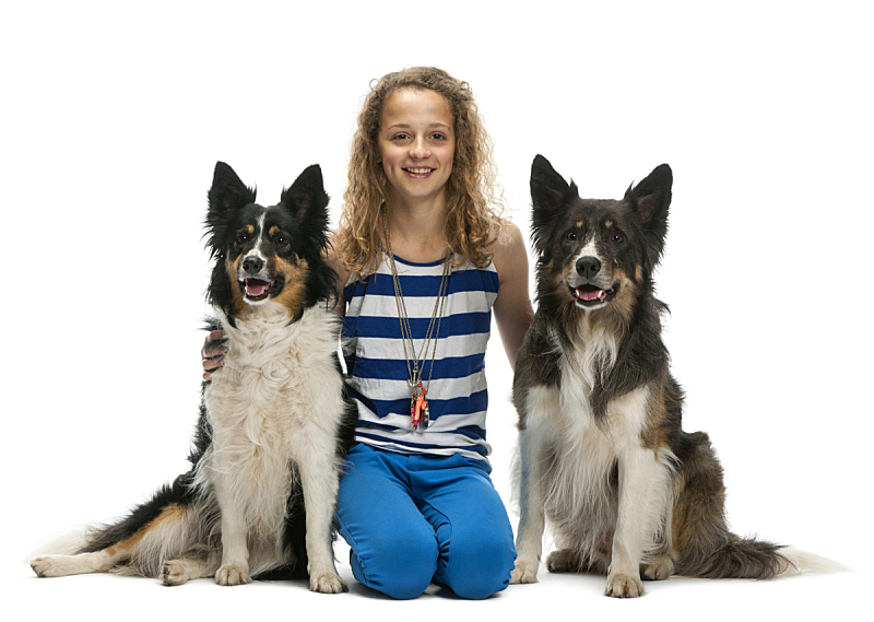 Young girl sitting between two Border Collies against white background