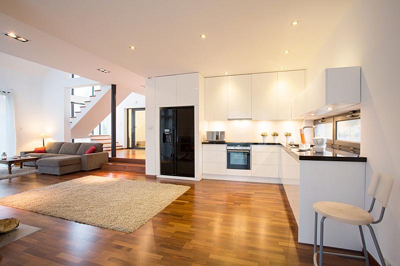 起居室,开放式厨房,水平画幅,别墅,无人,地毯,家具,居住区,现代,沙发