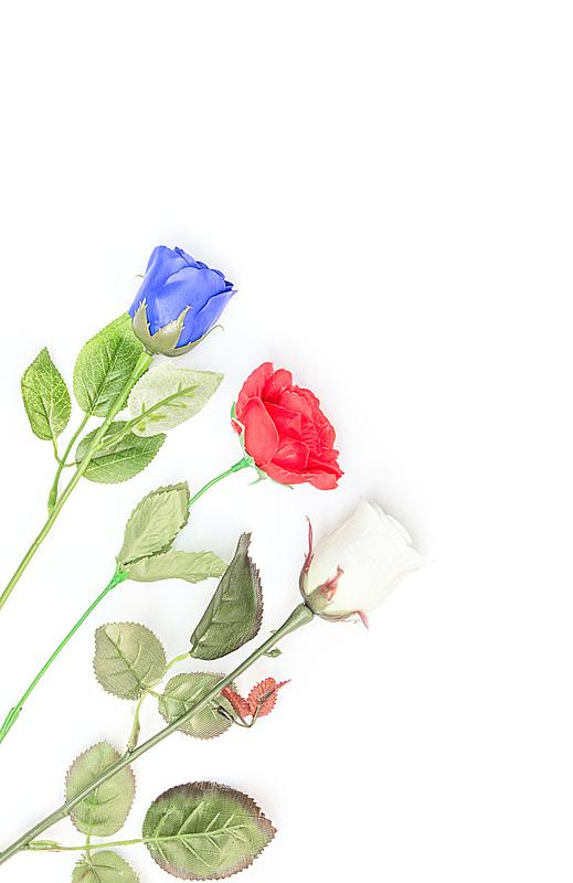 蓝色,塑胶,红色,白色,玫瑰,自然,垂直画幅,浪漫,花束,黄色