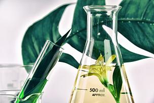 芳香的,实验室,叶子,自然,绿色,有机食品,草本,滴瓶,花,解决