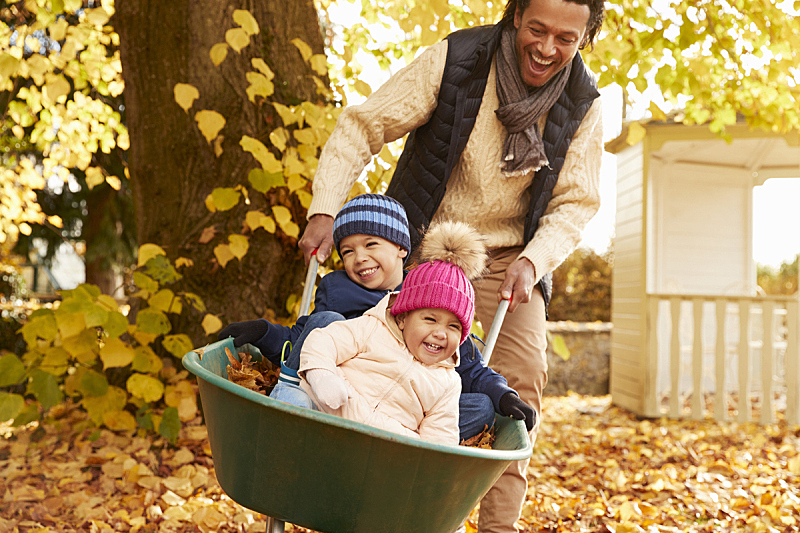 独轮手推车,秋天,父亲,儿童,家庭花园,牛津郡,提举,家庭生活,多种族,家庭