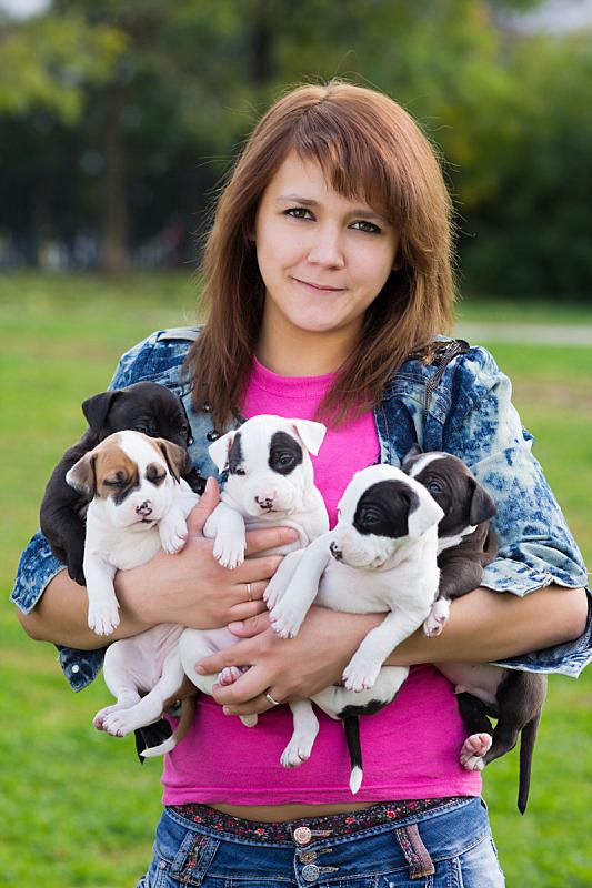 小的,拿着,小狗,五只动物,青年女人,可爱的,纯种犬,梗犬,肖像,一个人