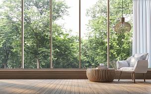 自然,透过窗户往外看,起居室,极简构图,图像,三维图形,现代,菜园,巨大的,窗户