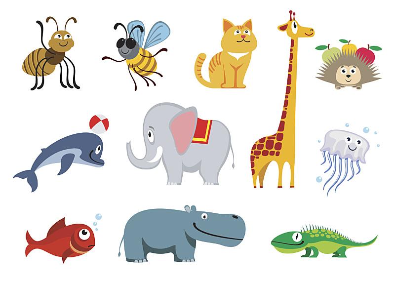 矢量,动物,动物园,球,美,水平画幅,绘画插图,符号,性格