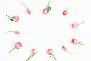 郁金香,边框,玫瑰,平铺,视角,留白,高视角,夏天,想法,白色