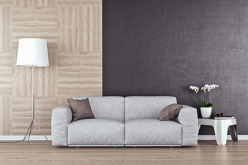 沙发,起居室,留白,华贵,地板,现代,住宅内部,门厅,三维图形,硬木