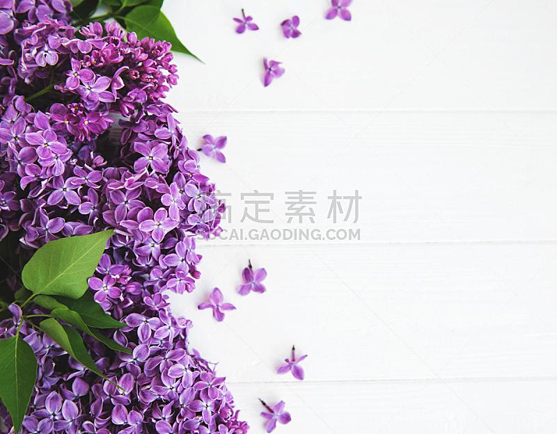 桌子,丁香花,美,留白,复活节,边框,芳香的,水平画幅,无人,五月