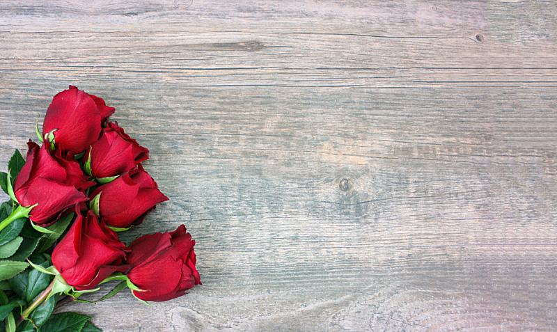 情人节,木制,玫瑰,红色,背景,在上面,贺卡,留白,边框,水平画幅