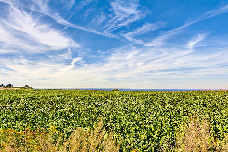 农业,居住区,德国,白云山脉,高动态范围成像,不确定,消失点,水,天空,褐色