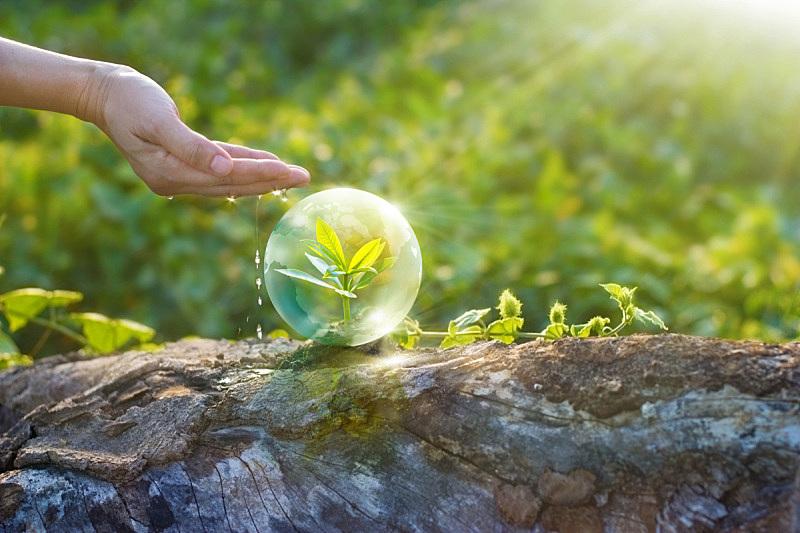 地球形,手,幼小动物,水,水平画幅,能源,符号,玻璃,早晨,纯净