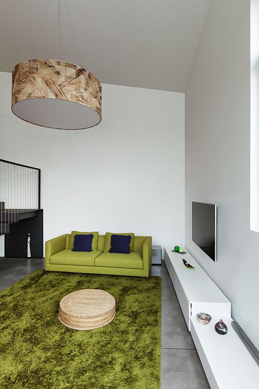 看风景,起居室,公寓,垂直画幅,新的,墙,无人,地毯,灯,家具