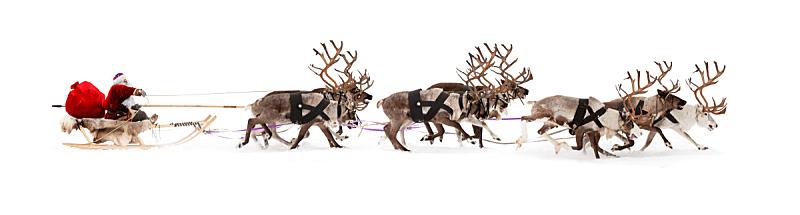 动物雪车,圣诞老人,鹿,雪橇,牛车,车用喇叭,动物挽具,雪,新的,男性