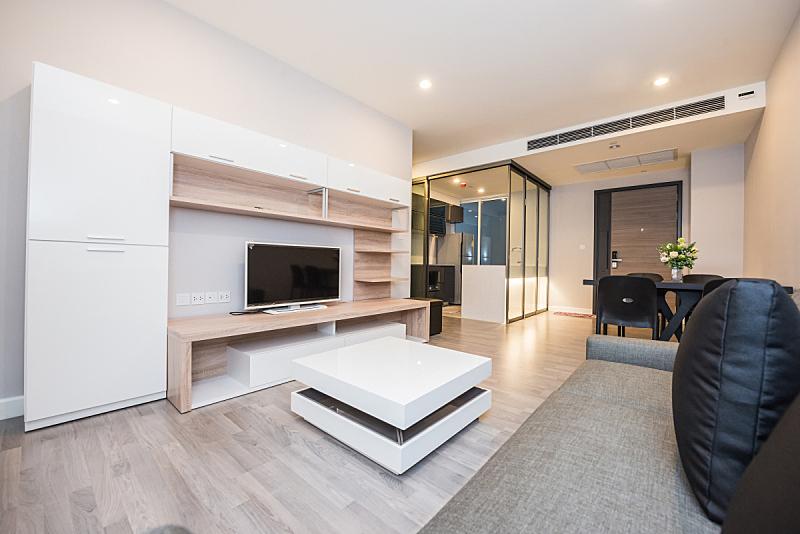 现代,室内,起居室,水平画幅,无人,硬木地板,灯,太空,住宅房间,桌子