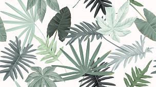 四方连续纹样,叶子,绿色,植物学,彩色蜡笔,红松,化妆舞会服,多样,照明设备,复古