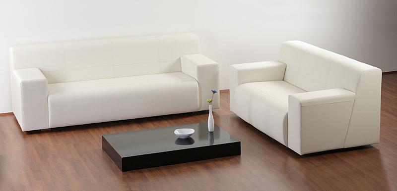 家具,起居室,极简构图,新的,座位,水平画幅,无人,现代,沙发,整洁的房间