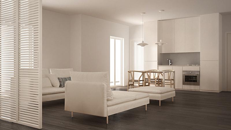 沙发,厨房,起居室,极简构图,白色,餐桌,躺椅,灰色,室内设计师,扶手椅