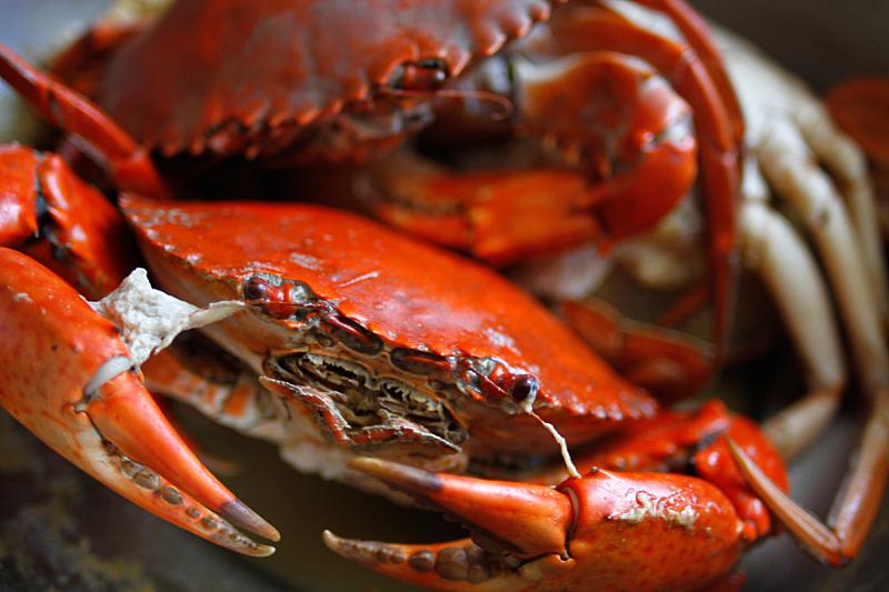 螃蟹,煮食,芳香的,水平画幅,膳食,海产,户外,蓝蟹,晚餐,甲壳动物