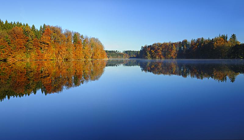 湖,秋天,黎明,宁静,森林,色彩鲜艳,水,天空,水平画幅,无人