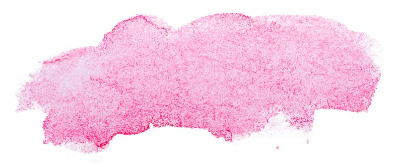 纹理效果,分离着色,水彩画,玷污的,粉色,白色背景,创造力,点状,全景,图像