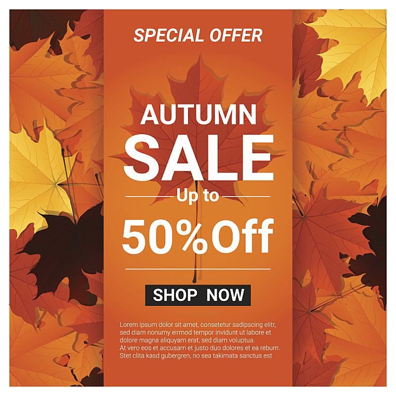 绘画插图,叶子,矢量,秋天,多色的,边框,无人,九月,商店