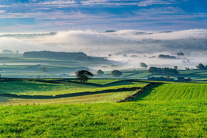 英国,风景,德比,美,水平画幅,无人,早晨,户外,草,非凡的