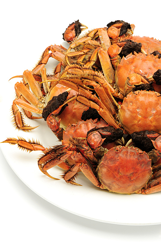螃蟹,分离着色,白色背景,动物腿,动物肢和翼,甲壳动物,动物身体部位,垂直画幅,特写,明亮