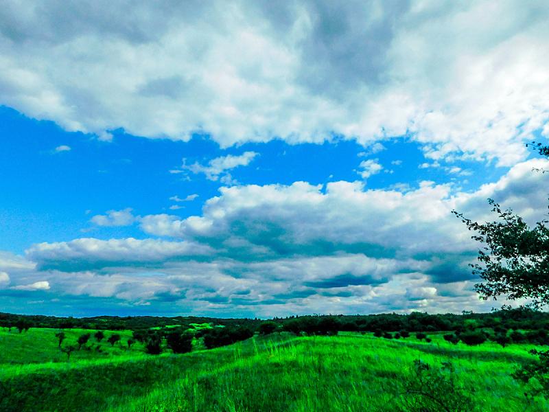 地形,气候,水平画幅,山,无人,纯净,草坪,夏天,户外,草