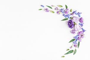 边框,白色背景,多色的,多样,丁香花,花瓣,紫色,风信子,花纹,国际妇女节