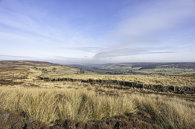 约克郡,羊胡子草,天空,旷野,摩尔人风格,石墙,水平画幅,无人,英格兰