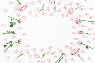 仅一朵花,情人节,粉色,边框,平铺,留白,高视角,古典式,夏天,乡村风格