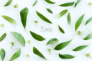 叶子,清新,绿色,符号,概念,自然美,视角,爱,花,上装