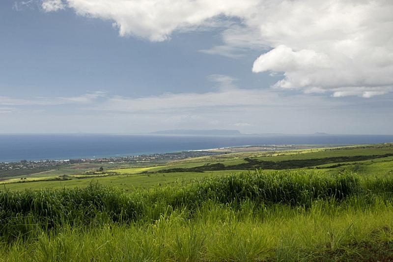 尼豪岛,考艾岛,夏威夷,南,岛,海岸线,威美亚峡谷州立公园,桨叉架船,外米亚峡谷,城镇景观