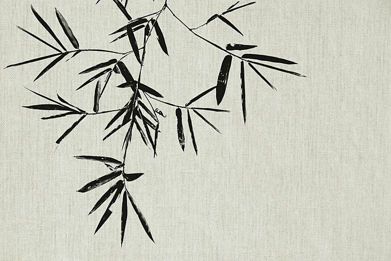 纺织品,纹理,枝,黑色,竹子叶,背景,竹子,艺术,天气,亚麻布
