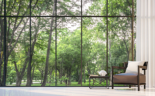 起居室,透过窗户往外看,极简构图,图像,园林,三维图形,凸窗,窗户,巨大的,森林
