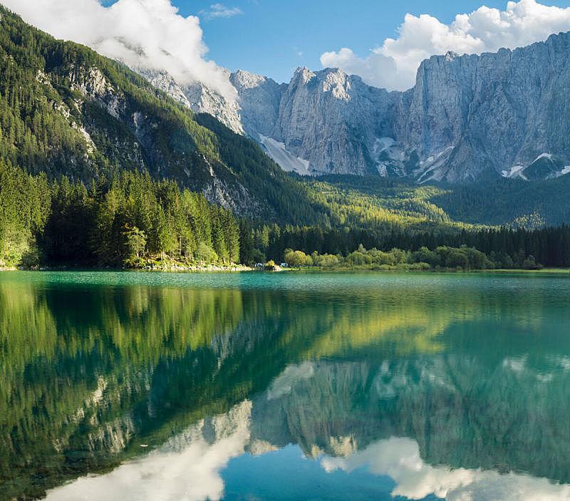 自然,公园,野生动物,水平画幅,绿色,绘画插图,巨大的,浪漫,城市,湖