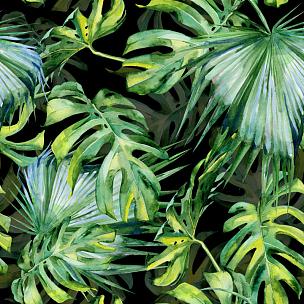 叶子,绘画插图,鸡尾酒,水彩画,热带雨林,拥挤的,热带气候,棕榈树,水彩画颜料
