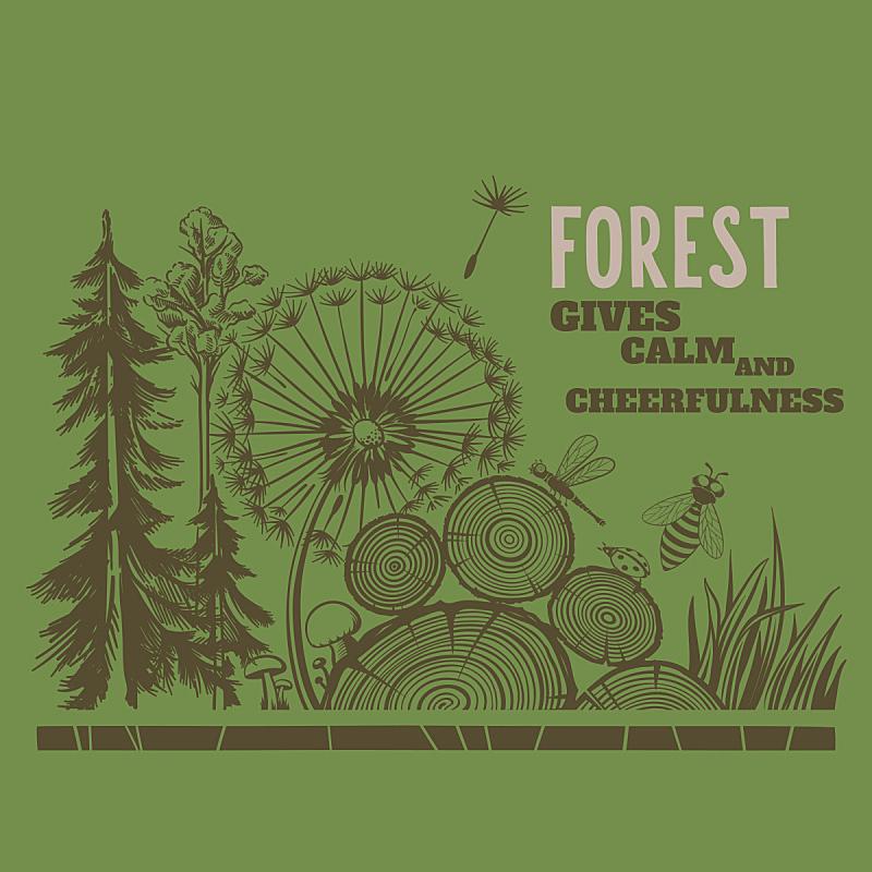 森林,年轮,蘑菇,树桩,蜻蜓,林间空地,瓢虫,蒲公英,贺卡