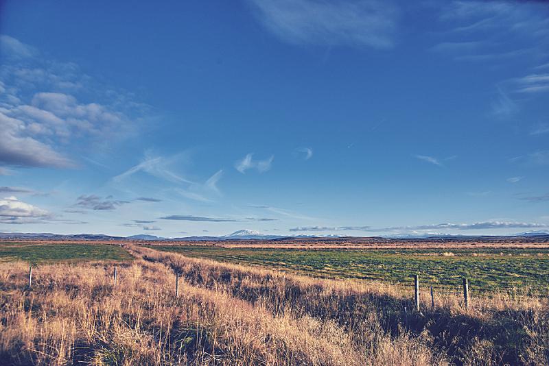 秋天,冰岛国,地形,旅途,清新,环境,农场,背景,户外,晴朗