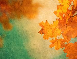 秋天,叶子,背景,橙色,式样,水平画幅,无人,蓝色,绘画插图,古老的