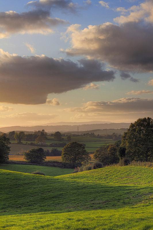 英格兰,垂直画幅,非都市风光,秋天,无人,户外,田地,英国,农场,云