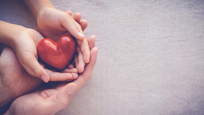 健康保健,家庭,手,成年的,拿着,概念,心型,红色,儿童,爱