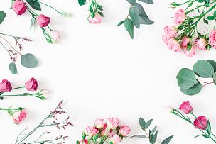 在上面,桉树,粉色,枝,平铺,风景,留白,边框,艺术,水平画幅