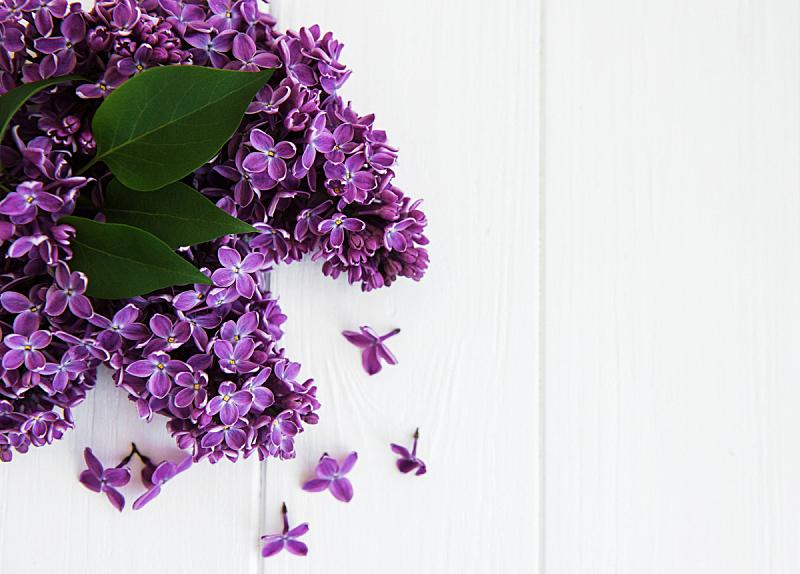桌子,丁香花,复活节,边框,厚木板,香水,春天,背景,夏天,节日