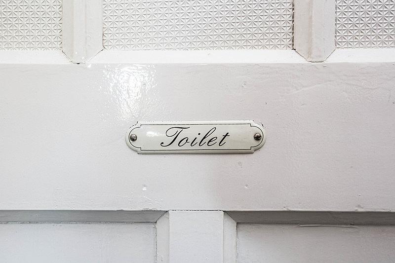 卫生间,单词,洗手间标志,木制,门,白色,留白,褐色,水平画幅,风化的