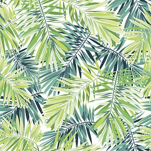 热带气候,热带灌木,式样,矢量,绿色背景,棕榈叶,菲尼克斯市,明亮,异国情调,热带植物图案
