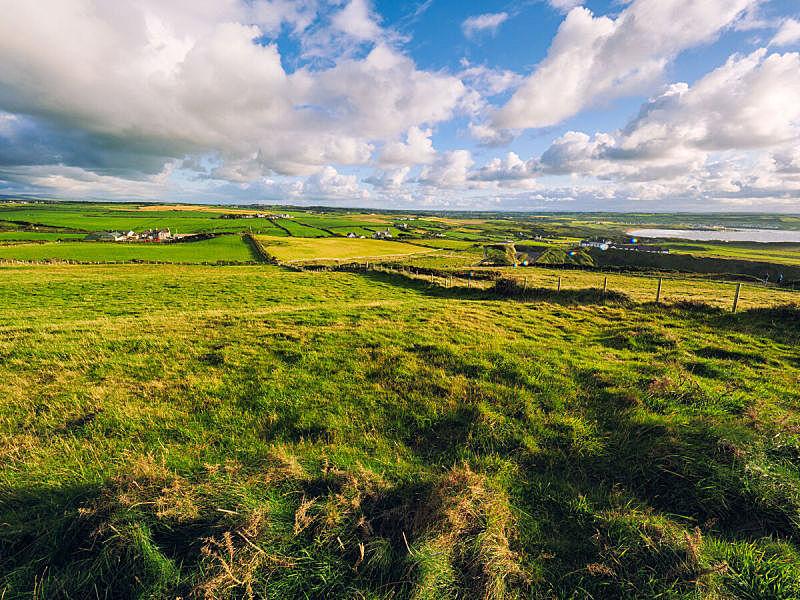 日光,北爱尔兰,堤道,巨大的,农业,云,英国,草,春天,农场