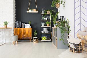 家具,住宅房间,植物群,水平画幅,无人,砖墙,家庭生活,篮子,工作室,居住区