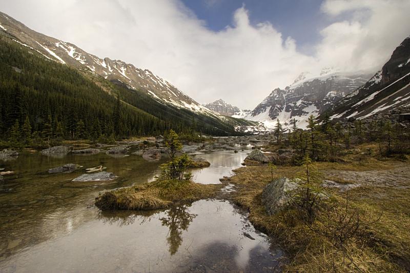 班夫国家公园,湖,lake consolation,水,水平画幅,雪,阿尔伯塔省,无人,夏天,户外