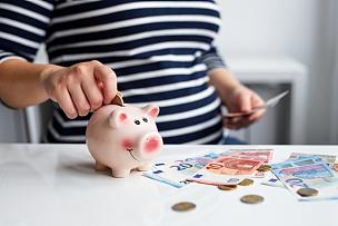 小猪扑满,女人,存钱罐,银行,预算,捷克,猪,平衡,数,储蓄