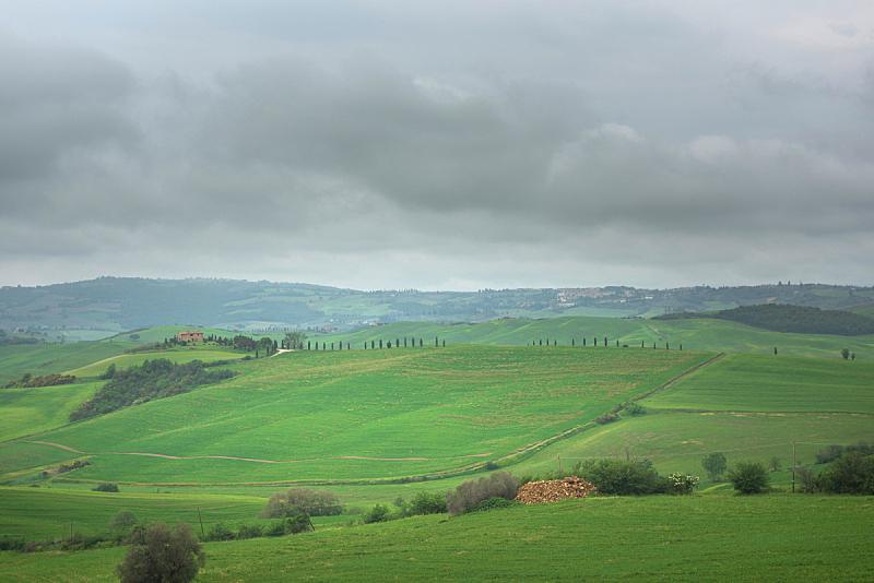 意大利,托斯卡纳区,地形,春天,自然美,农业,传统,葡萄酒,克里特岛,柏树